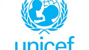 UNICEF Workshop – Developing Indicators for Adolescent's Participation  thumbnail